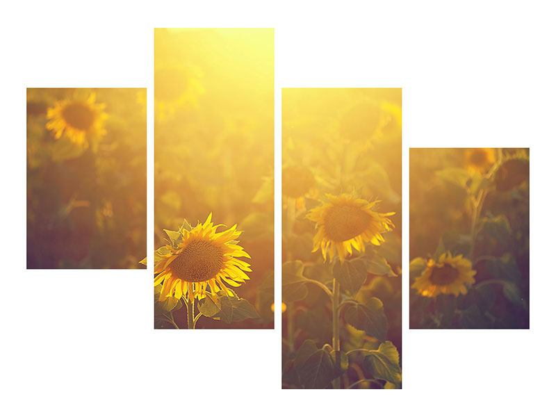 Modern 4 Piece Self-Adhesive Poster Sunflower In Golden Light