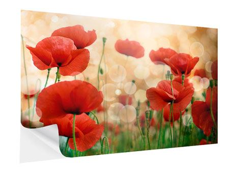 Posters adhesif Le coquelicot