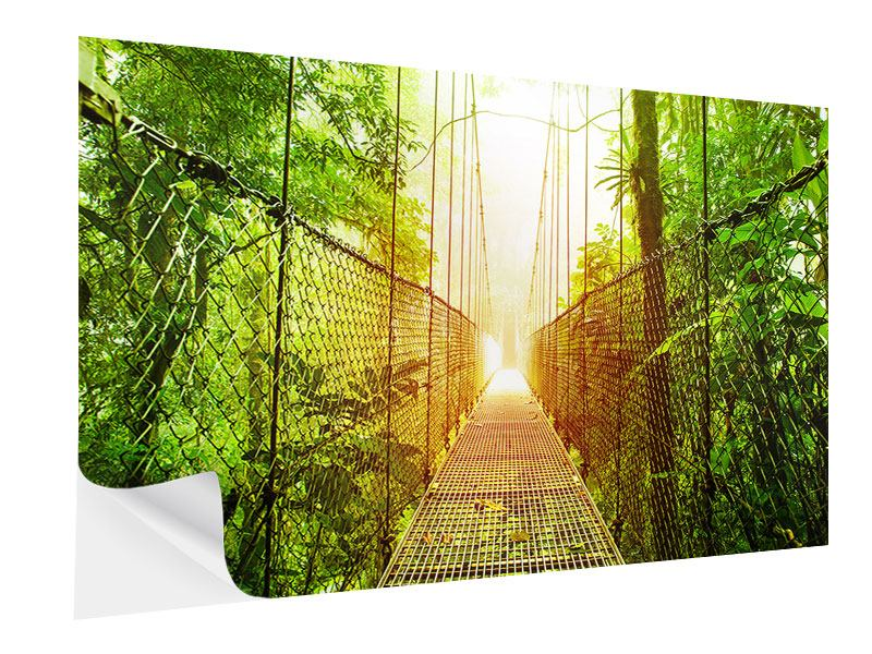 Self-Adhesive Poster Suspension Bridge