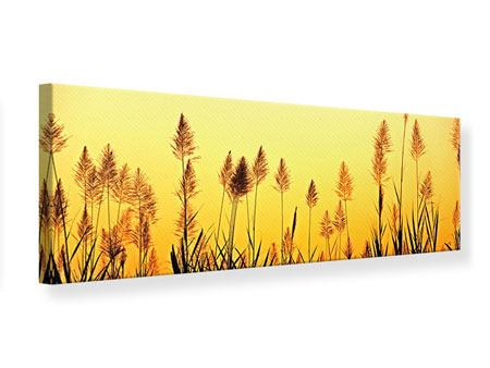 Panoramic Canvas Print The Flowers Of The Field