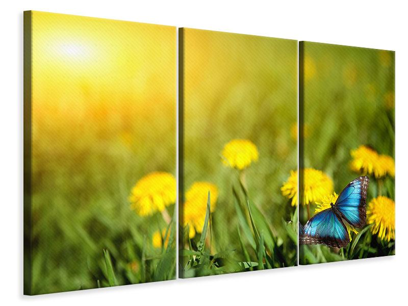 3 Piece Canvas Print Dandelion And Butterfly