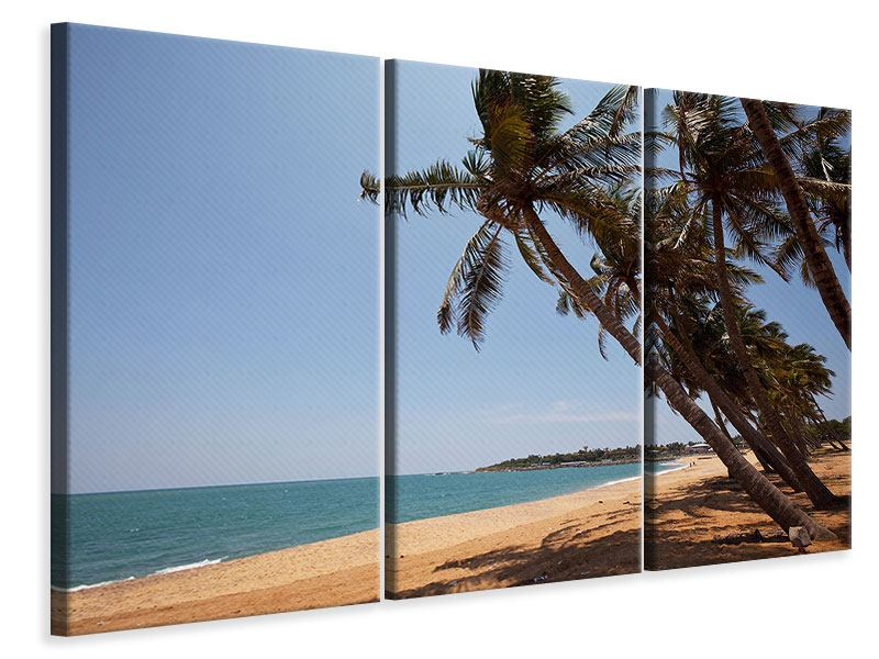 3 Piece Canvas Print Palm Leaves