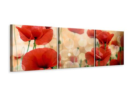 Panoramic 3 Piece Canvas Print The Poppy