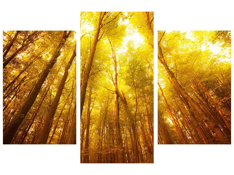 Modern 3 Piece Canvas Print Autumn Forest