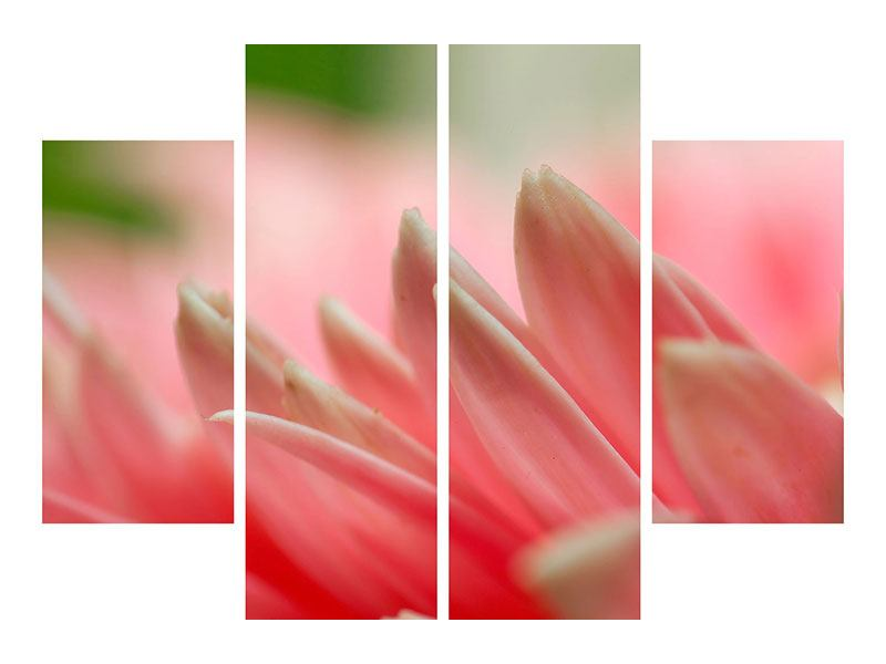 4 Piece Canvas Print Close Up Of A Flower