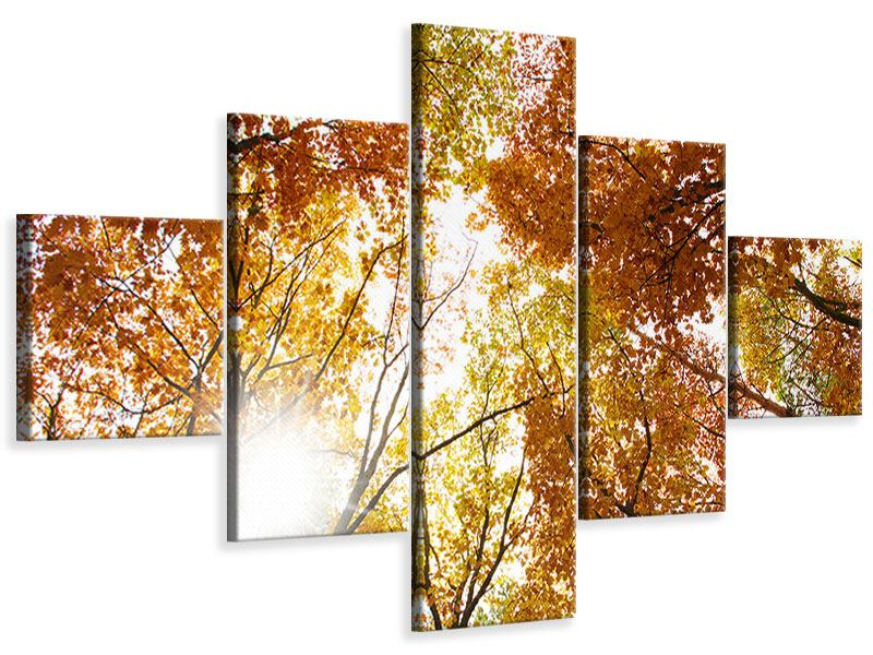 5 Piece Canvas Print Enlightened Autumn Trees