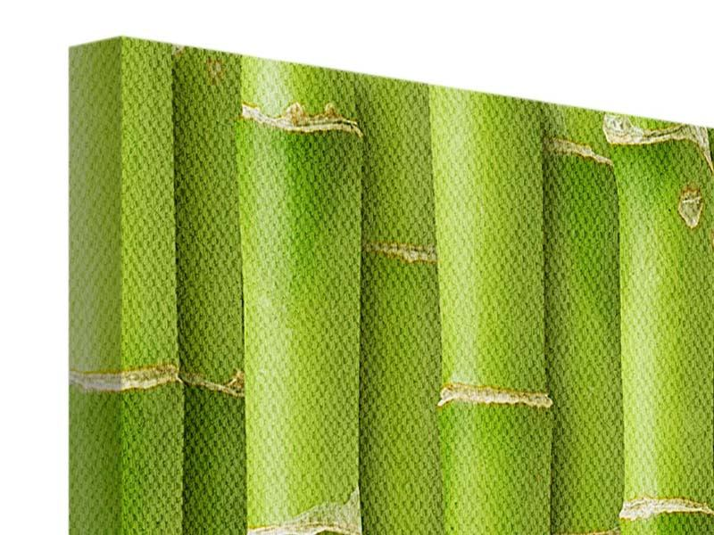 5 Piece Canvas Print Bamboo Wall