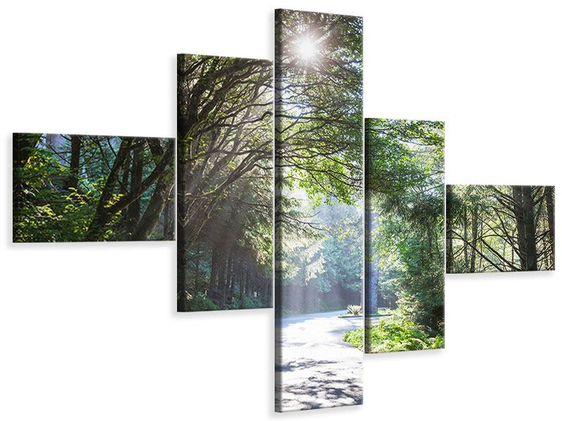 Modern 5 Piece Canvas Print Sunny Forest Path