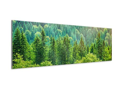 Panoramic Metallic Print The Forest Hill