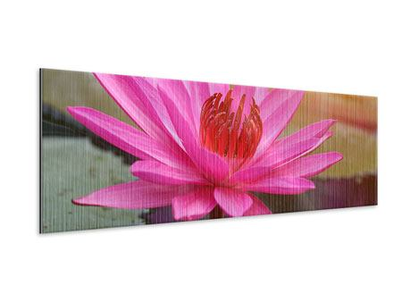 Panoramic Metallic Print Sunny Seerose