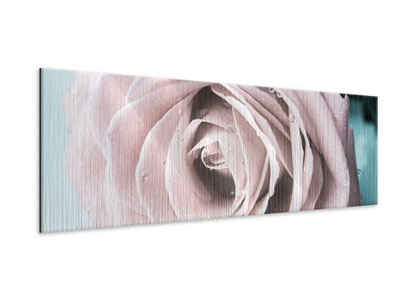 Panoramic Metallic Print Pastel Rose