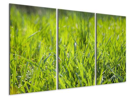 3 Piece Metallic Print Bright Grass In Morning Dew