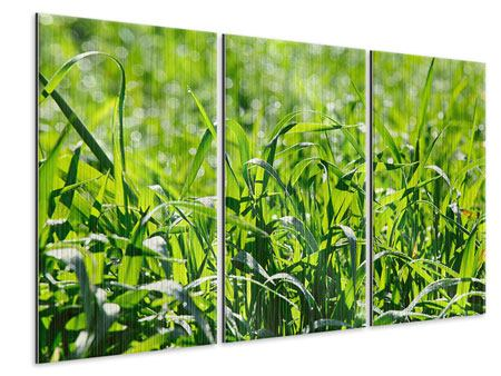 3 Piece Metallic Print Sunny Grass