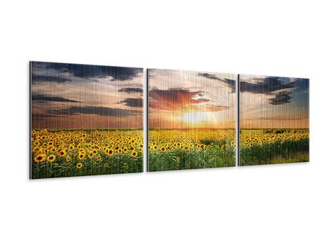 Panoramic 3 Piece Metallic Print A Field Of Sunflowers