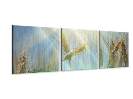 Panoramic 3 Piece Metallic Print King Of Cereals