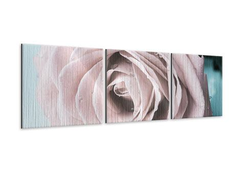 Panoramic 3 Piece Metallic Print Pastel Rose