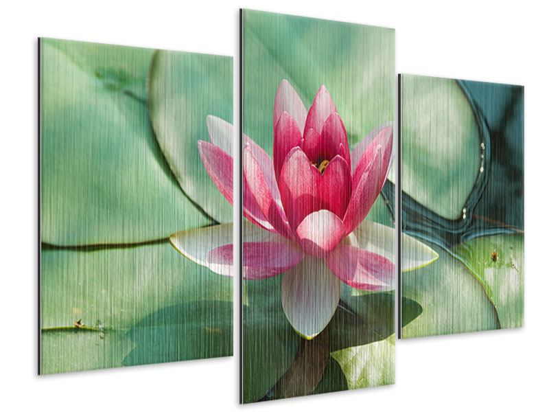 Modern 3 Piece Metallic Print The Frog And The Lotus Leaf