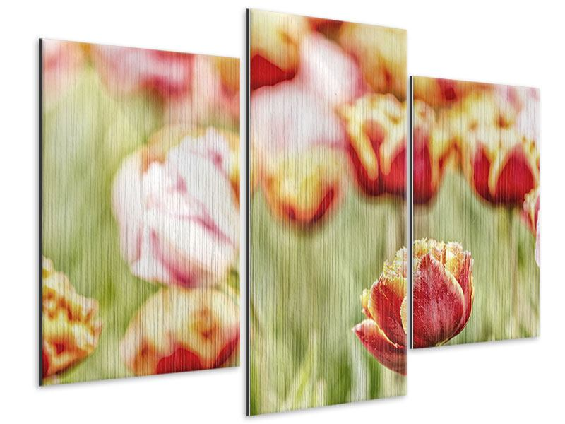 Modern 3 Piece Metallic Print The Beauty Of The Tulip