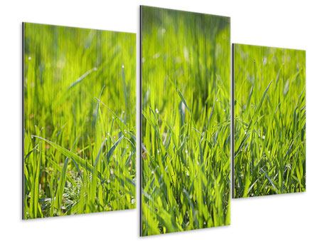 Modern 3 Piece Metallic Print Bright Grass In Morning Dew
