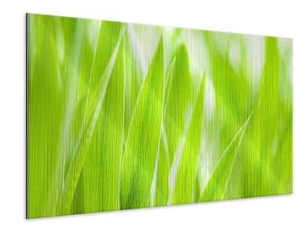 Metallic Print Grass XXL