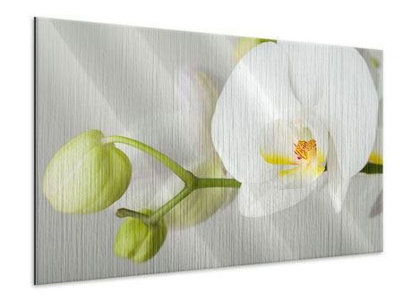 Metallic Print Giant Orchid