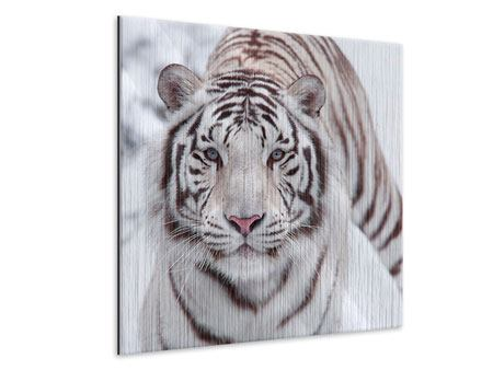 Metallic Print The King Tiger