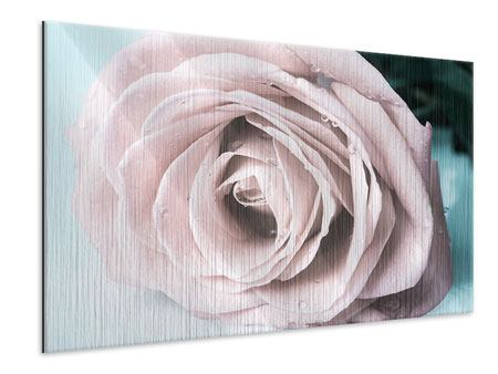 Metallic Print Pastel Rose