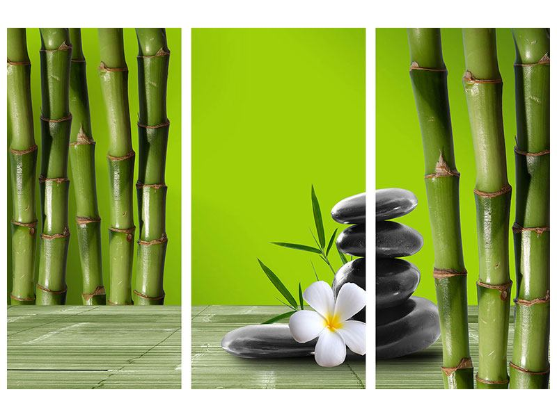 3 Piece Poster Bamboo