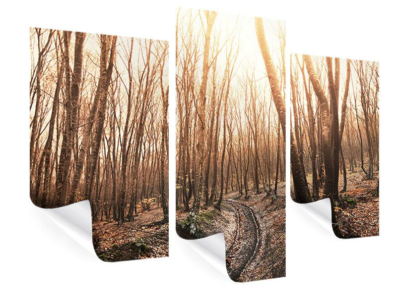 Modern 3 Piece Poster The Bare Forest