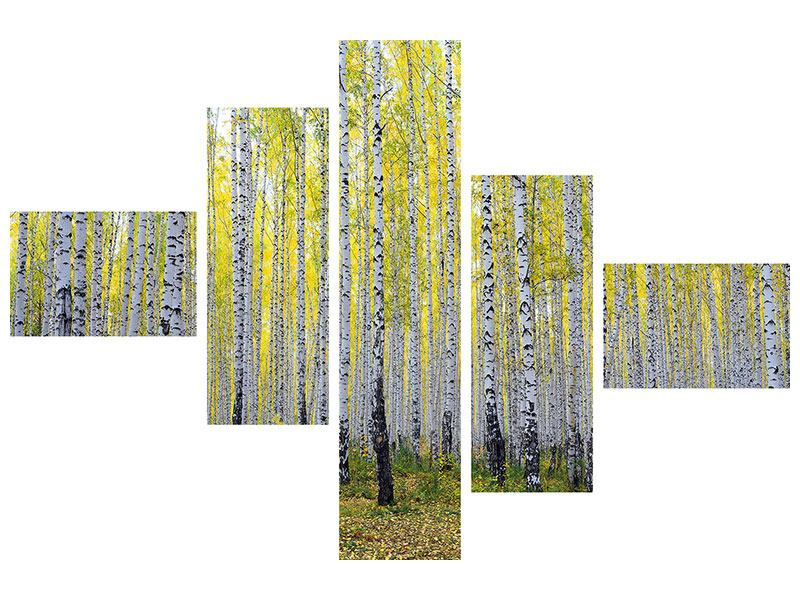 Modern 5 Piece Poster Autumnal Birch Forest