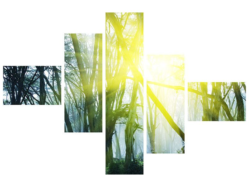 Modern 5 Piece Poster Sunbeams In The Forest