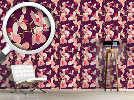Design Wallpaper Orchids