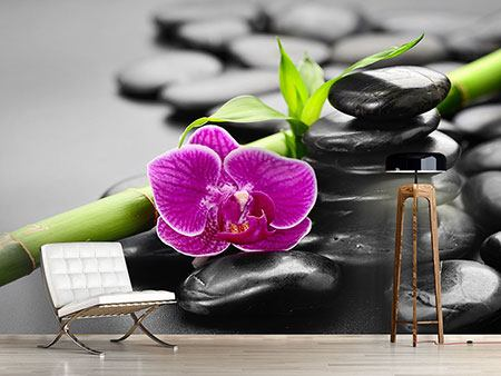 Photo Wallpaper Feng Shui Orchid